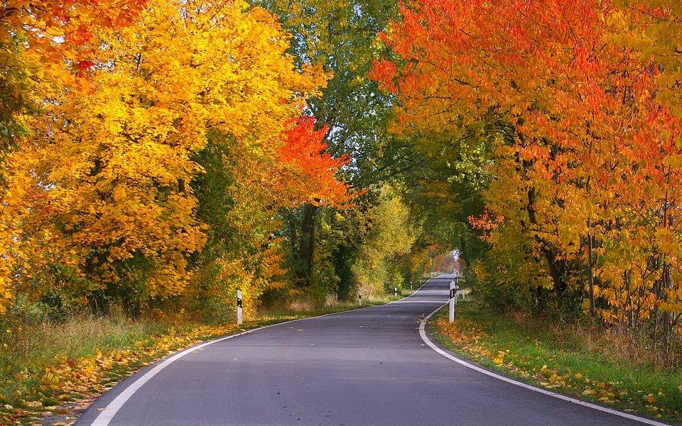 Viajar en otoño, ¿por qué es la mejor época para viajar?